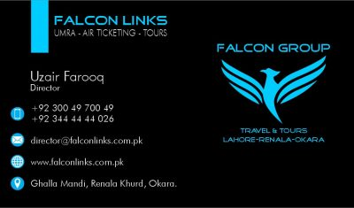 Visiting Card Design Falcon Links